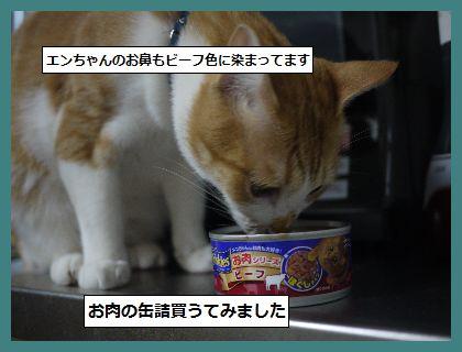 びょうき2 (2)