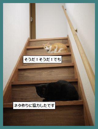 みみ2 (2)