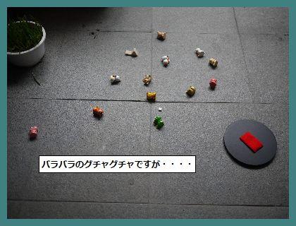 みみ4 (1)