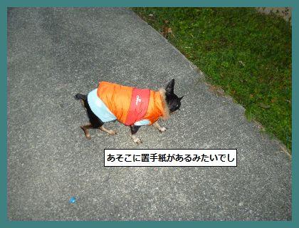 みみ4 (2)
