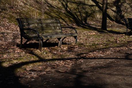 野付牛公園