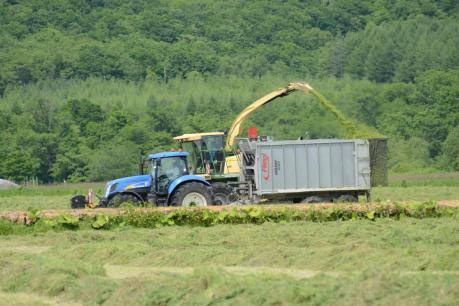 一番草の収穫作業