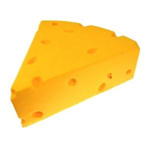 Cheesehead.jpg