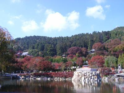 2009年11月8日 勝尾寺 011