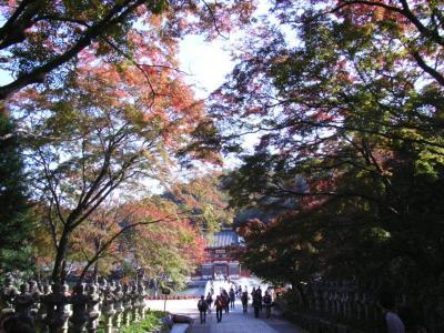 2009年11月8日 勝尾寺 010