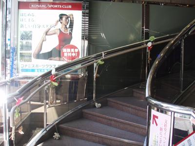 【イベント】もっと身近に小笠原展20100805