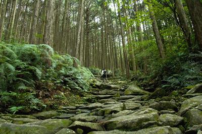 【GET】第18回 熊野古道