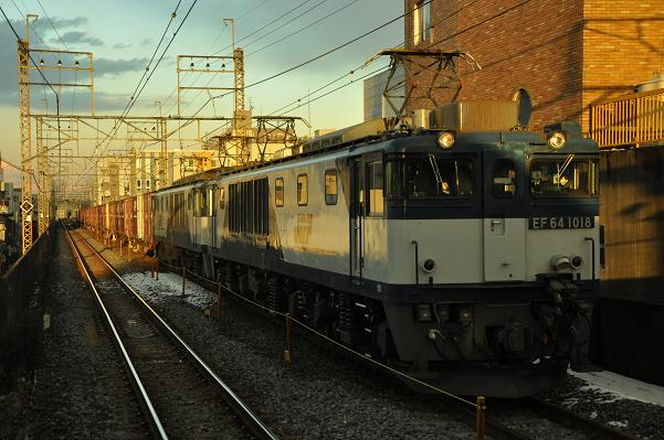 DSC_0098s_20120125203132.jpg