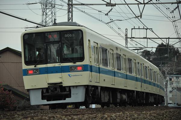 DSC_0099s.jpg