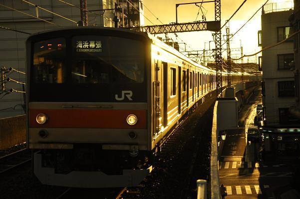 DSC_0118s.jpg