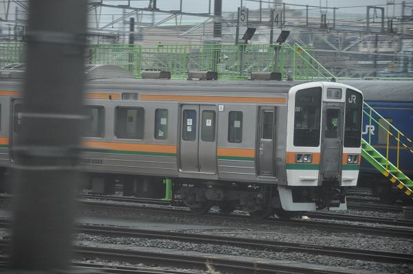 DSC_0262s.jpg