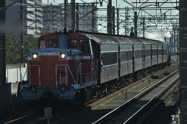 DSC_0609s.jpg