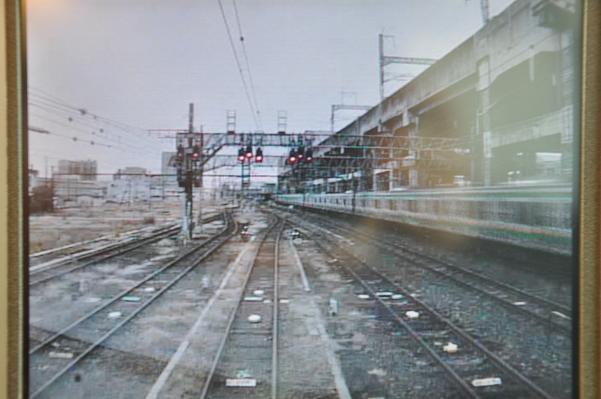 DSC_0624s.jpg