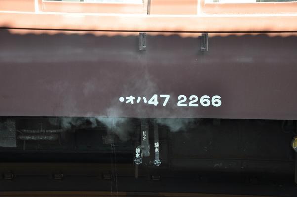 DSC_0656s.jpg