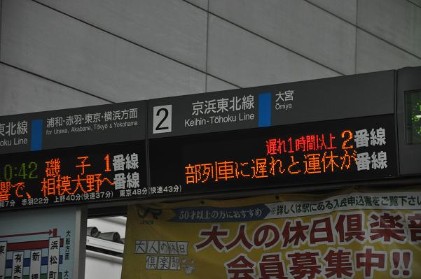 DSC_0776s.jpg