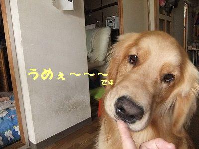 20120613-12.jpg