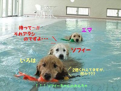 20120908-17.jpg
