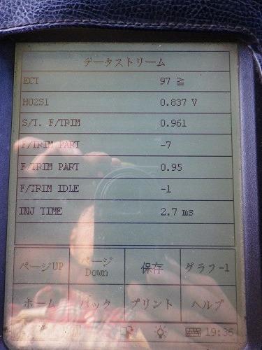 IMGP3771.jpg