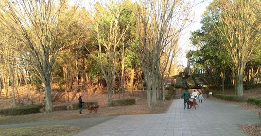 CIMG5984-公園