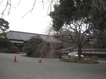 GOTOKUJI-2010Jan-2_20100111143909.jpg
