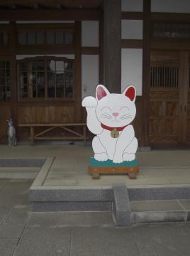 GOTOKUJI-2010Jan-3_20100111143908.jpg