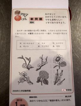Nichino-calendar2