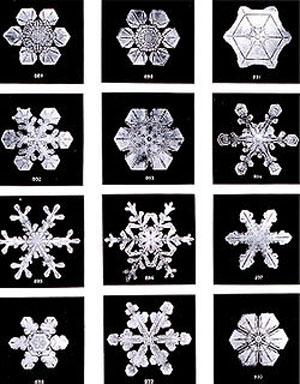 雪の結晶blog01