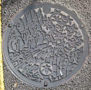 2010.5.29高槻市マンホールblog01