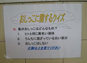 井の頭公園便所blog01