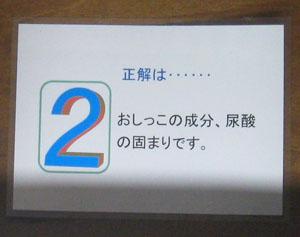 井の頭公園blog03