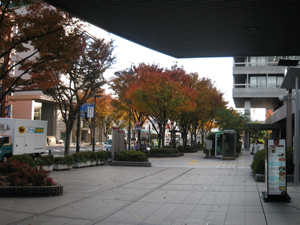 2010.11.24会議前blog01