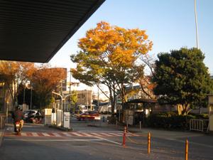 2010.11.24会議後blog02