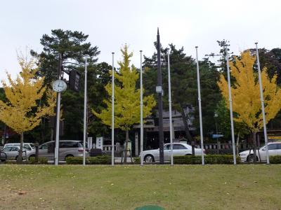 036_convert_20111129173226.jpg
