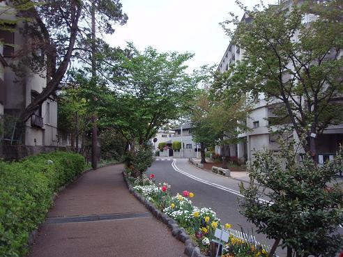 烏山川緑道4