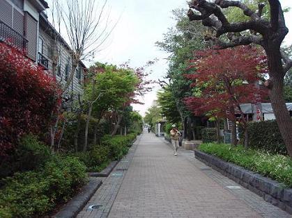 烏山川緑道3