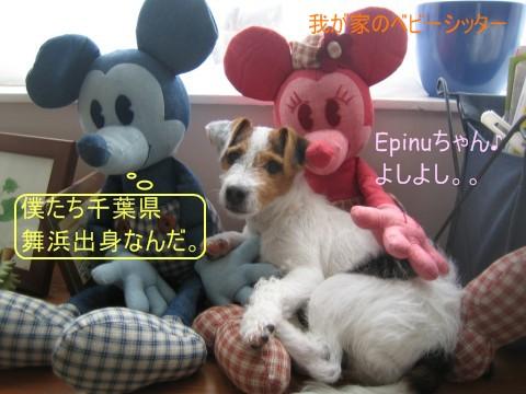 epi_MM.jpg