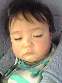 半目の寝顔