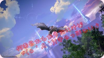 SS(tera 2011-08-13 14-12-41-032)