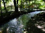 上賀茂神社ならの小川2