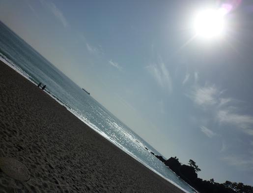 桂浜の浜辺(20100122)