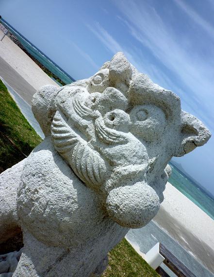 沖縄の海(2010年2月)