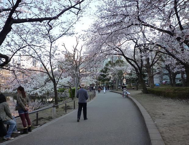 上野公園(20110405)-3