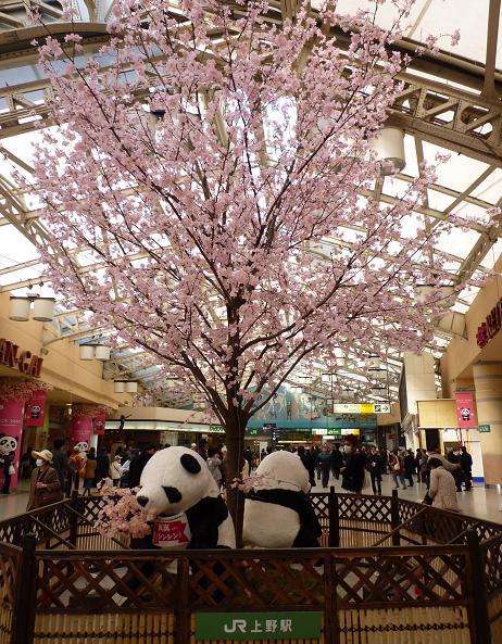 上野駅(2011年4月5日)