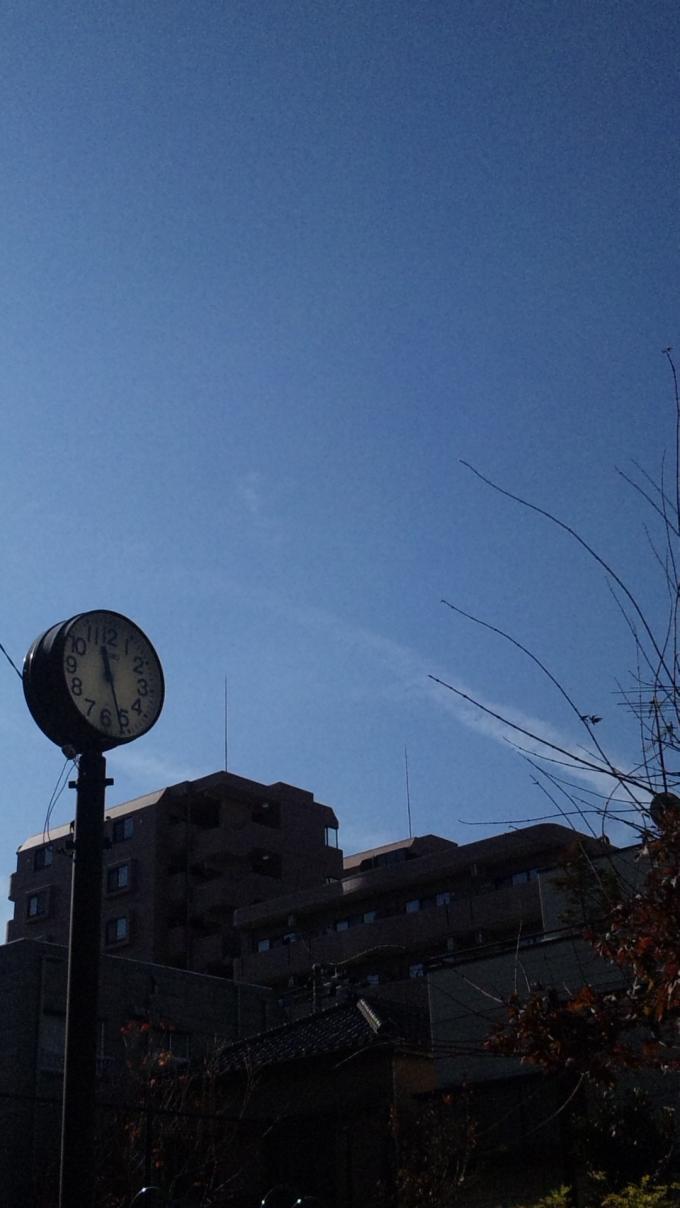 BLUE  SKY_20101215