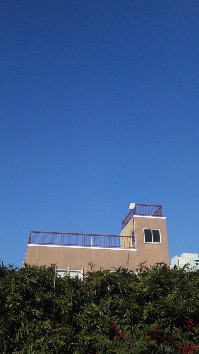 BLUE SKY_20101218