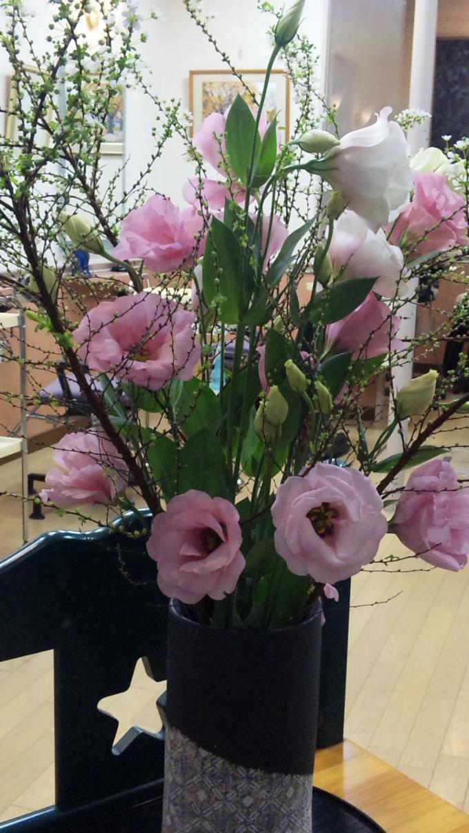 Flower_20101219
