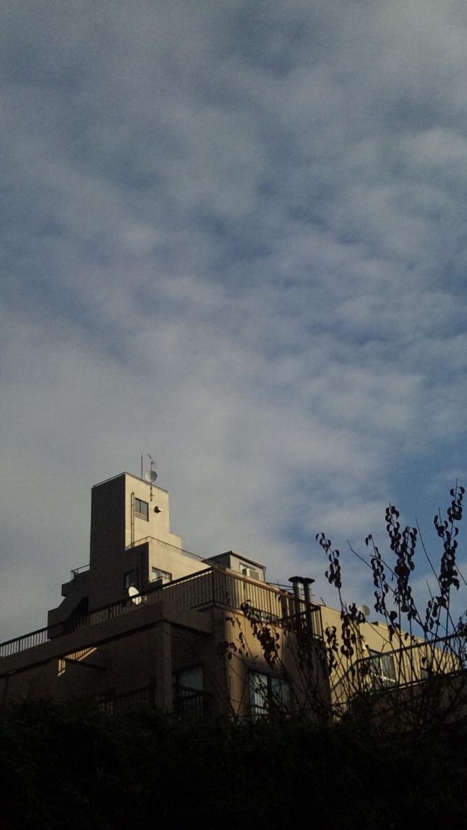 BLUE SKY_20101222