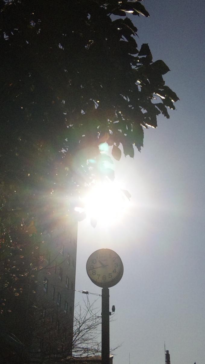 朝日_20101227