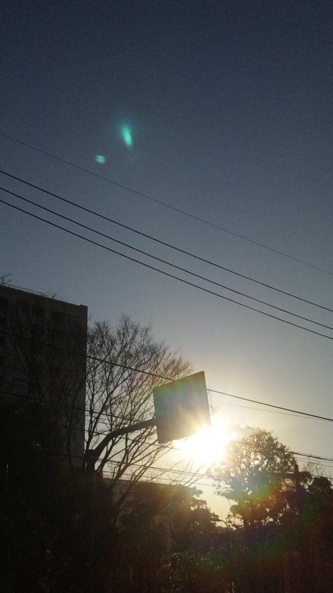 朝の太陽_20101228