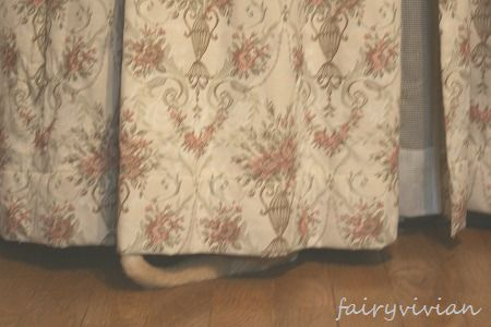fairy091117 5